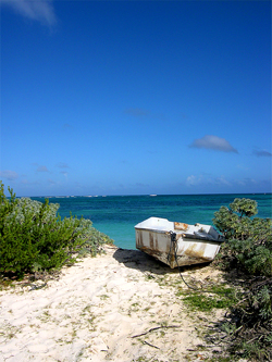Taking in the beautiful view of one of Anegada's pristine beaches