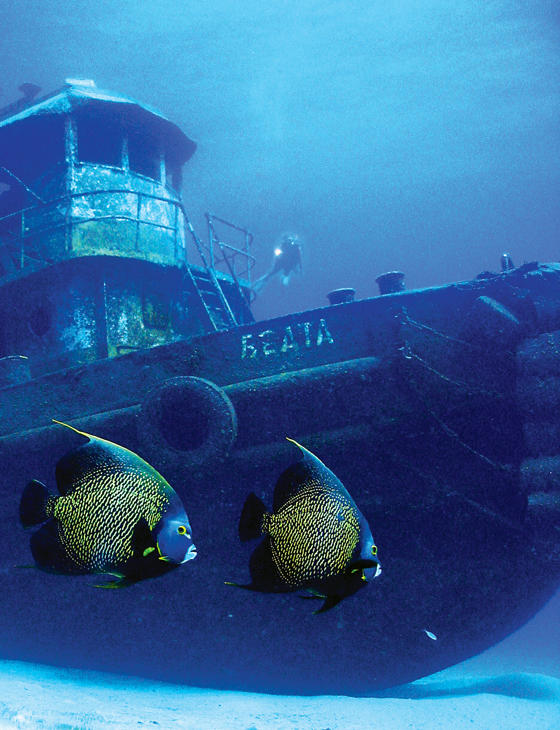 Wreck Diving in The BVI