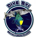 dive-bvi-logo_crop