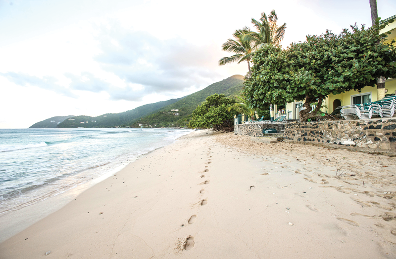 Sebastian S On The Beach Welcome Guide To British Virgin Islands